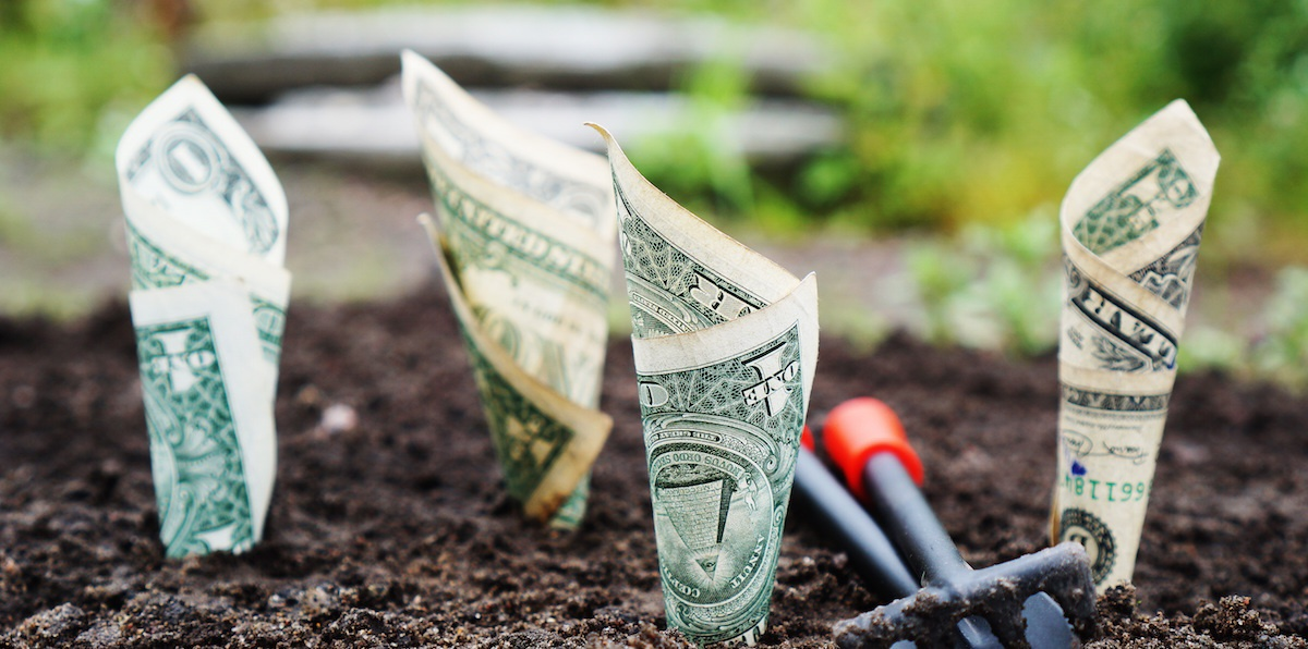 SAFE explained for seed funding your startup